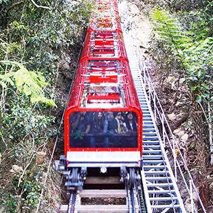 84-FUL Scenic Railway